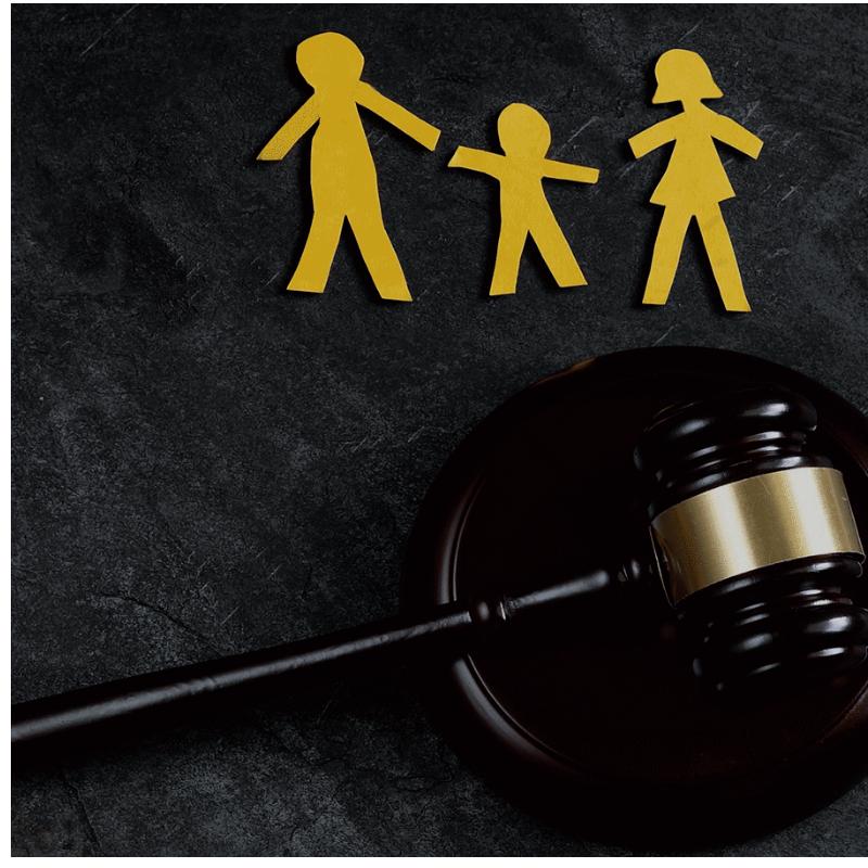 Derecho Procesal Oral Familiar